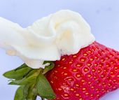 Strawberry And Cream Means Creamy White And Juicy
