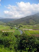 Farms And Fields In Kauai