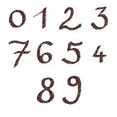 Numbers of roasted coffee beans template