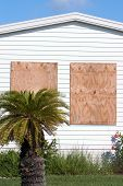 Hurricane Protection Plywood Panels5