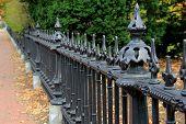 Black, wrought iron fence