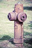 Rusty Fire Hydrant