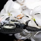 Cryogenic Spa Concept Of Delicate White Hibiscus, Zen Stones With Drops, Snow, Ice And Towels On Ref