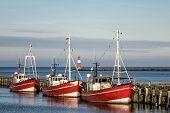 Fishing Boats In Warnemuende