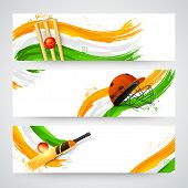 stock photo of cricket ball  - Website header or banner set for Cricket with national flag colors - JPG