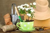 Rustic table with flowers, pots, potting soil, watering can and plants on sackcloth background. Planting flowers concept