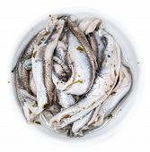 Anchovis (isolated On White)