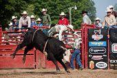 Cowboy bull riding at a rodeo
