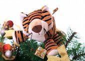 Tiger cub on a new-year tree.