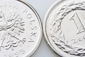 stock photo of zloty  - Polish money  - JPG