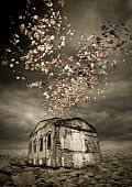 image of glorify  - mysterious dream about lonely house and flowers in the sky - JPG