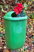 stock photo of reject  - flowers in the trash - JPG