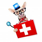 stock photo of emergency light  - chihuahua dog as a medical veterinary emergency doctor with stethoscope and first aid kit behind a white and blank banner and blue lights behind white banner isolated on white background - JPG