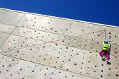 image of climbing wall  - Youngster - JPG