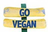 picture of vegan  - Go Vegan sign isolated on white - JPG
