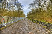 stock photo of cobblestone  - Image of the famous cobblestone road from the forest of Arenberg  - JPG
