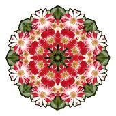 Roses Kaleidoscope