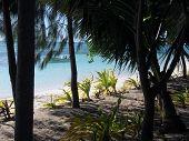 View Down Beach 1