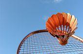 Golden Badminton