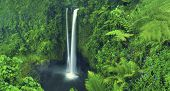 Постер, плакат: Waterfall Nature Scenics Waterfall Forest Concept