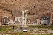 Column In Terme Di Caracalla, Rome