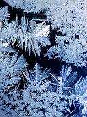 Frost in einem Fenster