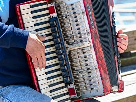 stock photo of accordion  - Bayan player is playing on the vintage accordion - JPG