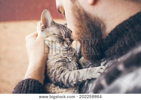 poster of Muzzle of a cat and a man's face. Close-up of handsome young man and tabby cat - two profiles. The Devon Rex cat with the owner. Cat gently pressed. Love cats and humans. Relationship weasel.