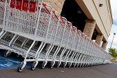 Shopping Carts 3