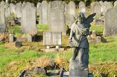 statue of a stone cherubim / angel in a cemetery in london, england