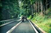 Group of a bikers on the highway between beautiful green pine tree forest, motorcyclists traveling a poster