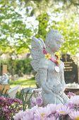 picture of cherubim  - beautiful statue in english cemetery - JPG