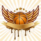 vector basketball and wing
