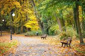 Autumnal Park In October, Footpath With Bench For Relaxation poster