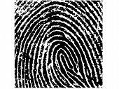 Fingerprint Crop 8
