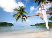 picture of wedding couple  - beautiful couple on the beach in wedding dress on palm tree - JPG