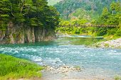 Beautiful landscape in the Japanese mountains with a wild river, red bridge and rock covered by typical pines