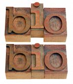biography or biology concept, bio shortening word  in vintage wooden letterpress printing blocks iso