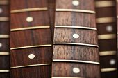 Many guitar necks aligned. Rosewood and ebony finger board electric guitar necks. poster