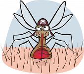 mosquito - blood sucking