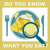 Plastic Pollution, Microplastic Problem. Microplastic In The Food. Ecological Poster. Fried Fish Wit poster