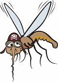 mosquito miserável