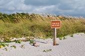 Keep Off Dunes Sign In Florida