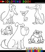 pic of newfoundland puppy  - Coloring Book or Coloring Page Black and White Cartoon Illustration of Funny Purebred Dogs or Puppies - JPG