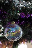 Transparent Christmas Ball In A Plastic Pine