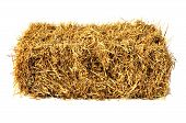 image of feeding horse  - Hay bale isolated on white background - JPG