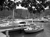St. Barts Hafen West Indies