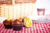 Picnic And Cupcakes