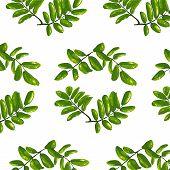 Rhombic Leaves Seamless Pattern