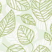 Vector seamless texture for design of green leaves. Eco background